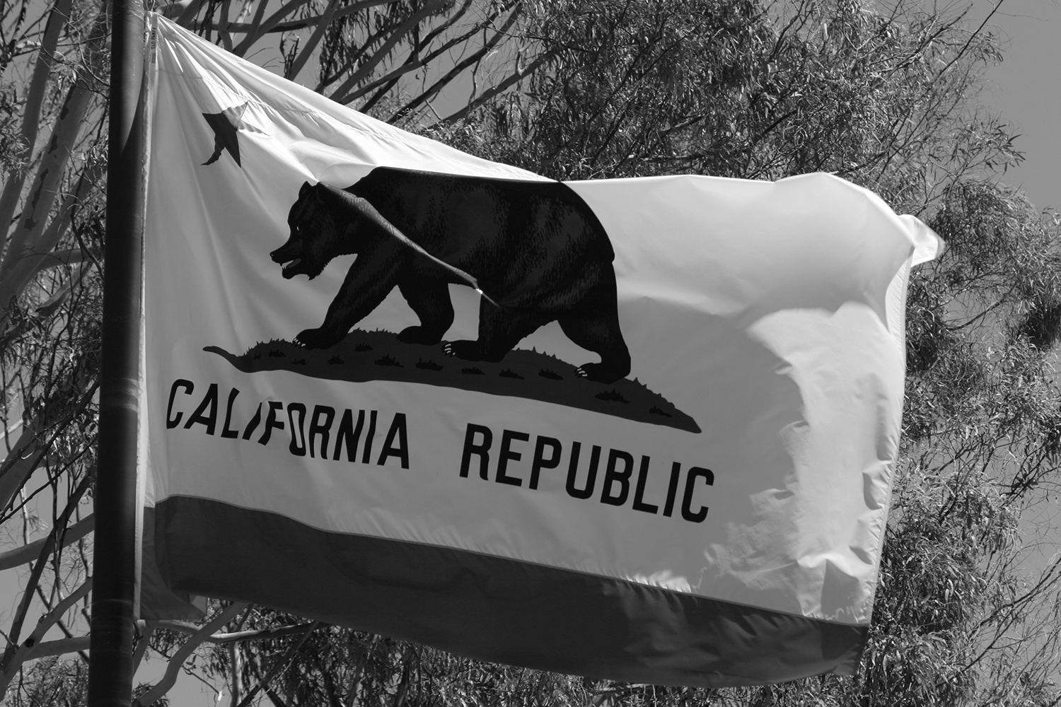 California Overhauls Its Economic Nexus Thresholds